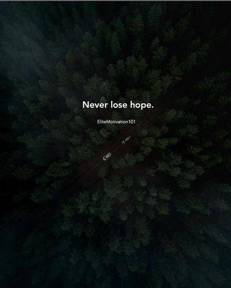 Positive Quotes Never Lose Hope Citation Citation