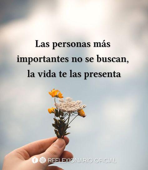 Las personas más importante no se buscan la vida te las presenta.