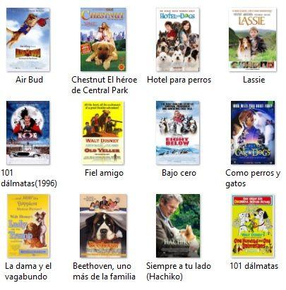 Las 50 Mejores Películas De Perros Para Niños Y Adultos Perros Para Niños Hotel Para Perros Perros