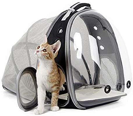 Amazon Com Halinfer Expandable Cat Backpacks Space Capsule Clear Bubble Cat Carrier Backpacks For Smal In 2020 Cat Backpack Carrier Pet Backpack Carrier Cat Carrier