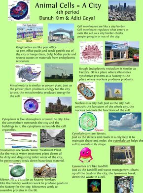 Cell City Project Brochure Samples Cell Simile Project Publish With Glogster Cell City Project Cell City Cells Project