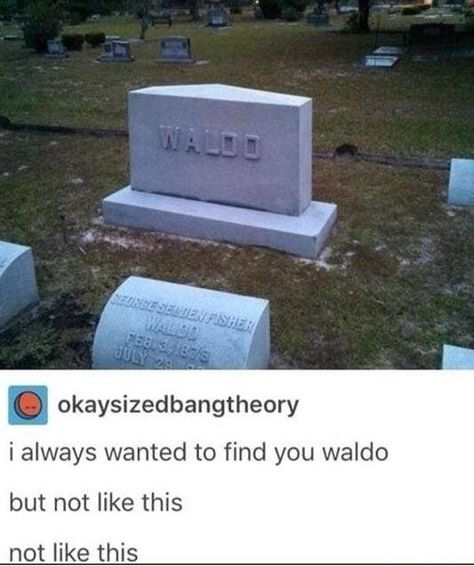 This person who finally found Waldo: 24 Things That'll Make You Laugh Through Your Tears