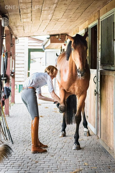 The lady and the horse. #stylemyride @SMRequestrian Style My Ride www.stylemyride.net