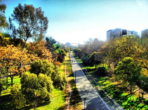 Jardines Del Rio Turia En Valencia Very Close From Our Hotel Book Now Your Accomodation In Valencia Www Bedbreakf Valencia Spain Valencia Botanical Gardens