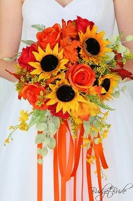 Procut Orange Sunflower Helianthus Annuus Orange Petals And A Dark Disc Tall With Strong Stems 3 4 Blooms Not Orange Sunflowers Flower Seeds Sunflower