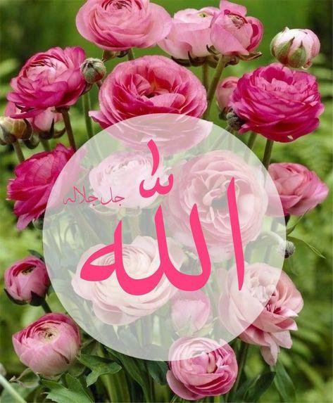 Pin By Semsem Batat On اجمل الصور Beautiful Names Of Allah Islamic Calligraphy Allah