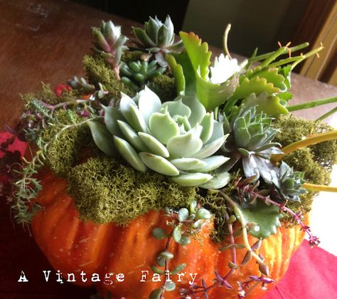We love the idea of giving succulents on the porch a fall twist with a pumpkin planter!
