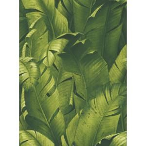 York Wallcoverings Tropical Zoo Peel And Stick Wallpaper Covers 28 18 Sq Ft Rmk11255rl The Home Depot Peelable Wallpaper Peel And Stick Wallpaper Banana Leaf