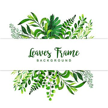 Color Colorful Colored Multicolor Multipurpose Paint Leaf Nature Bloom Blooming Elements Collection Set Pack In 2021 Watercolor Leaves Leaf Background Frame Background