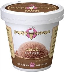 Puppy Cake Fun and Healthy People Food For Dogs!