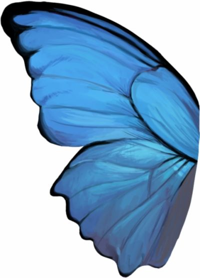 Blue Butterfly Wings Png Wings Png Blue Butterfly Wings Blue Butterfly