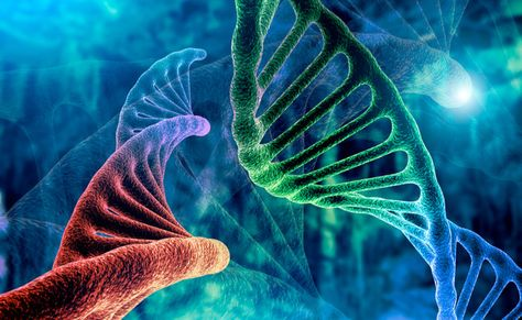 PDS Biotechnology Surges 41% on Proof its Product Kills Cancer Tumors — Warrior Trading News