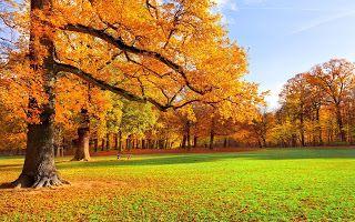 اجمل صور مناظر طبيعية متحركة 2016 Autumn Scenery Beautiful Scenery Wallpaper Autumn Landscape