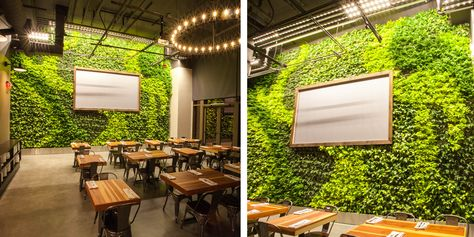 Steins Beer Garden Living Wall By Habitat Horticulture View 2