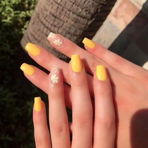 nails shape Cute Nail Designs for Every Nail - Nail Art Ideas to Try Do you get overwhelmed when choosing your manicure? We have gathered 50 best cute nail designs suitabl Simple Acrylic Nails, Square Acrylic Nails, Best Acrylic Nails, Simple Nails, Colorful Nails, Acrylic Nails Yellow, Pastel Nails, Yellow Nail Art, Acrylic Nails For Spring