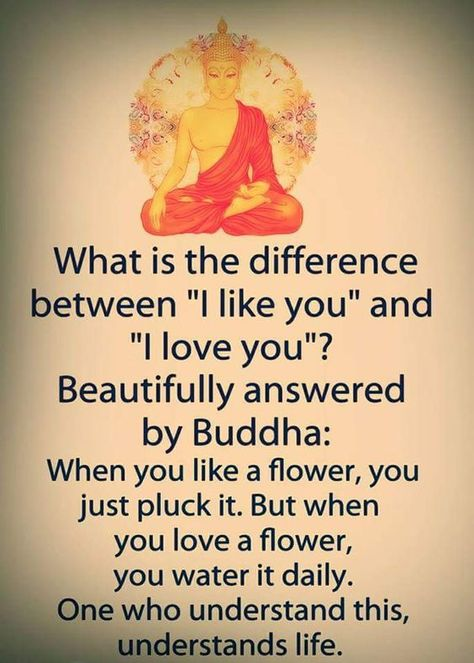 #buddhaquotes Love for everyone