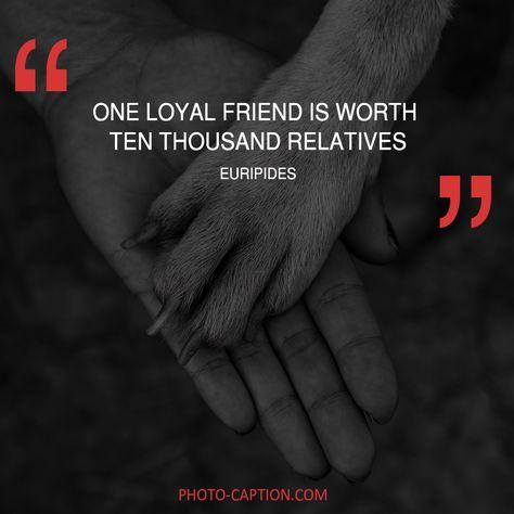 Top quotes by Euripides-https://s-media-cache-ak0.pinimg.com/474x/68/46/b8/6846b861f0f802b03b0204d89ade423b.jpg