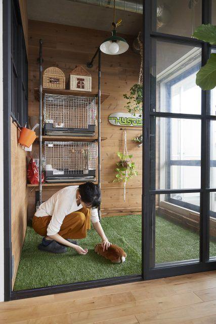 ウサギが自由に遊べる家 専用インナーバルコニーが付いた1ldkにリノベ Sumai 日刊住まい ウサギ用ハウス ペットの部屋 うさぎ ペット