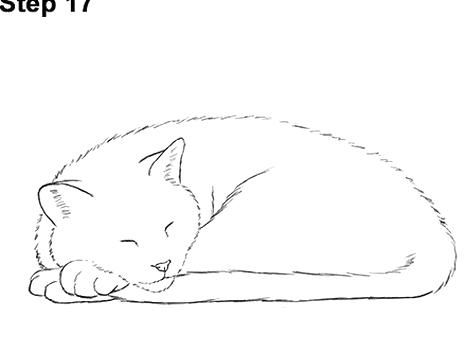 Howto Draw Kittens How To Draw A Cat Head Draw A Realistic Cat Step By Step Pets Realistic Drawings Cat Drawing Tutorial Animal Drawings