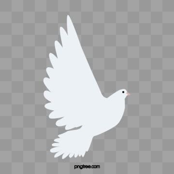 White Dove Animal Flying White Dove Soar To Great Heights Png Transparent Clipart Image And Psd File For Free Download Dove Images Dove Pictures Animal Clipart