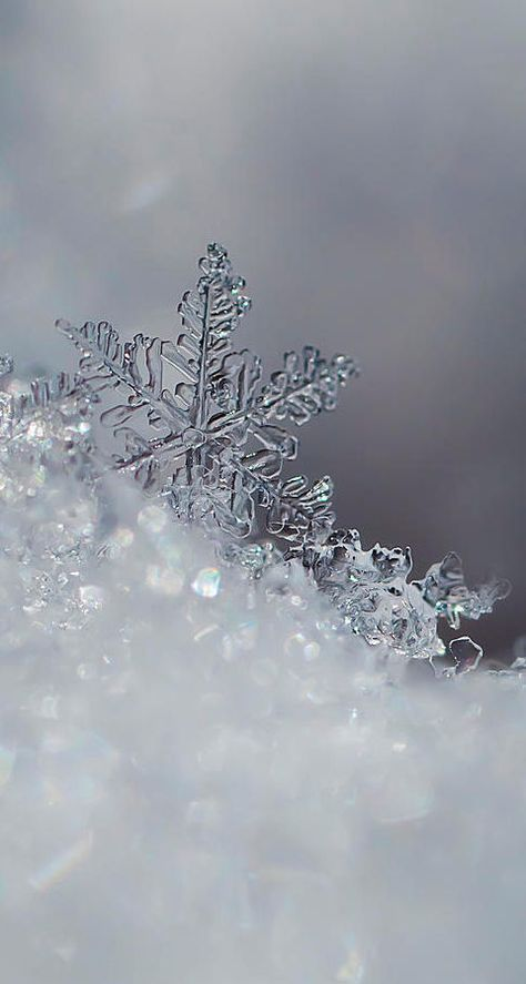 16 Ideas Photography Nature Winter Water 628041110520847520 Snowflake Wallpaper Winter Wallpaper Winter Iphone