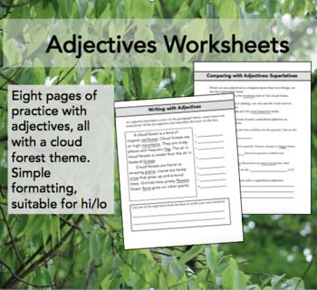 Adjectives Worksheets: Into the Cloud Forest | Grammar and