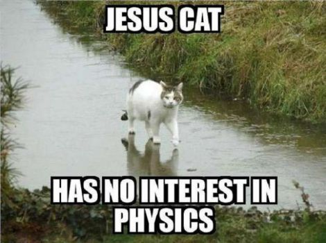 A&M researchers now studying religion through funny Internet memes ...