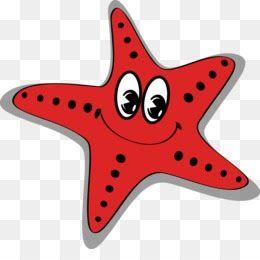 Menakjubkan 30 Gambar Bintang Kartun Png Gambar Baru Diunggah Setiap Minggu Apakah Anda Mencari Gambar Bintang Png Sea Star P Kartun Bintang Desain Vektor