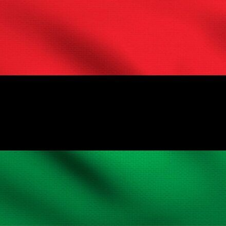 Large Red Black Green Flags 3 Feet By 5 Feet The Pan African Alliance In 2020 Red Black Green Flag Black And Red Patterned Crop Top