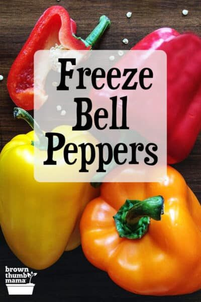 How To Freeze Bell Peppers In 2020 Stuffed Peppers Freezing Bell Peppers Stuffed Bell Peppers