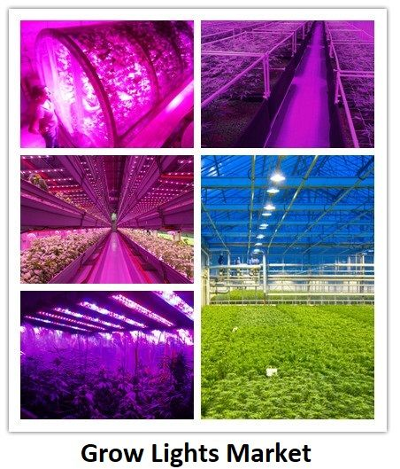 Global Grow Lights Market Is Expected To Reach Market Size Of 5 954 1 Million By 2023 Grow Lights Vertical Farming Farming Techniques