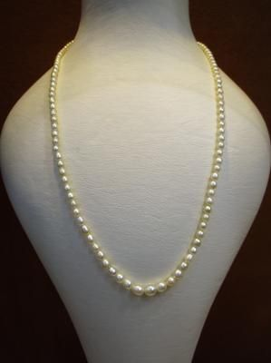 a61ca2908d943 Natural Basra Pearl Necklace 43 carats from Persian Gulf in 2019 ...