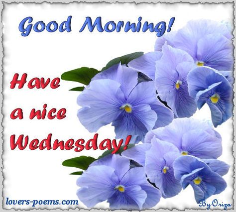 Happy Wednesday Good Morning Have A Nice Day Pictures Happy