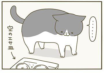 ごはんプレッシャー 猫 漫画 猫 ねこ