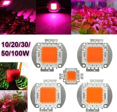 Led For Plant Growth Full Spectrum High Power Led Chip Grow Light 10w 20w 30w 50w 100w Power Led Grow Lights Grow Lamps