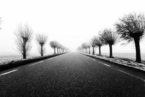 fotografie The endless road Insta kills...