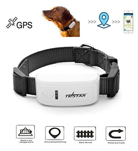 Hangang Pet Tracker Pet Gps Tracker For Dog The 2nd Generation Anti Lost Dog Tracker Dog Gps Collar Global Gps Gsm Sim 200h Pet Tracker Dog Tracker Dog Gps