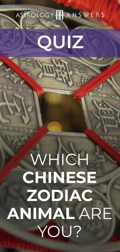 Each of the 12 animals of the Chinese Zodiac is associated with certain personality traits and characteristics. Does your Chinese Zodiac personality match your real Chinese Zodiac sign? #chinesezodiac #yearofthepig #yearoftherat #quiz #astrologyquizzes #yearoftheox