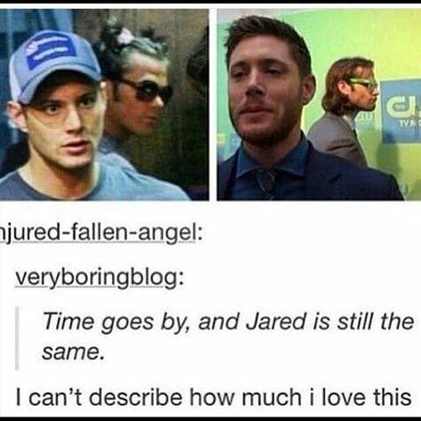 Jared and Jensen Supernatural Fans, Supernatural Tattoo, Supernatural Wallpaper, Troll, Spn Memes, Winchester Boys, Winchester Brothers, Jared And Jensen, Jensen Ackles