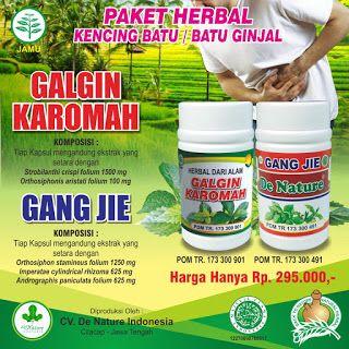 Konsultasi Herbal Pasir Resep Dokter