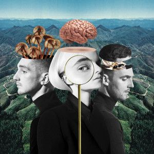 Clean Bandit What Is Love Album Download MAKHITS COM | pics