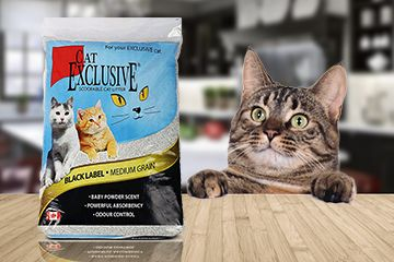 Deal Of The Week Get Flat 20 Off On Purchase Of 2 Packs Of Cat Exclusive Scoopable Cat Litter Click On Image For Order Now Cat Litter Best Cat Litter Cats