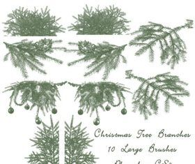 Christmas Tree Branch Photoshop Brushes Christmas Tree Branches Christmas Tree Background Christmas Branches