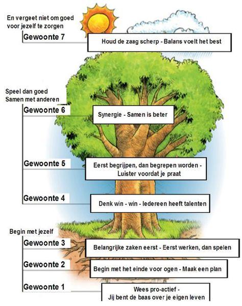 De boom van 7 gewoonten - De 7 eigenschappen van Happy Kids - Sean ...