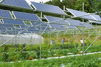 Solar Panels On A Greenhouse