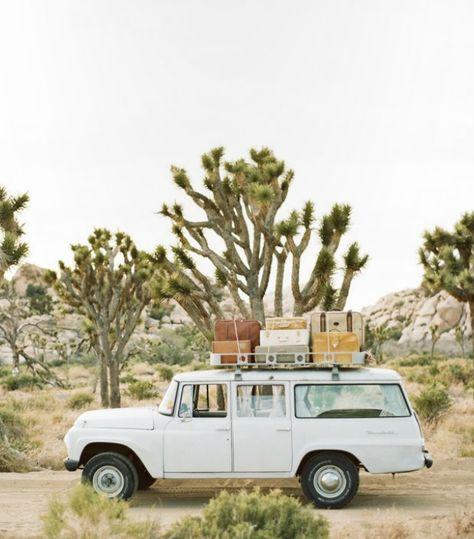 Escape to the desert...