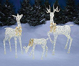 Amazon Com Set Of 3 Lighted White Gold Deer Family Buck 60 Doe 52 Fawn 28 Total Of Christmas Deer Decorations Deer Family Christmas Yard Decorations