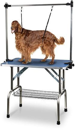 Top 10 Best Dog Grooming Tables In 2020 Reviews Dog Grooming