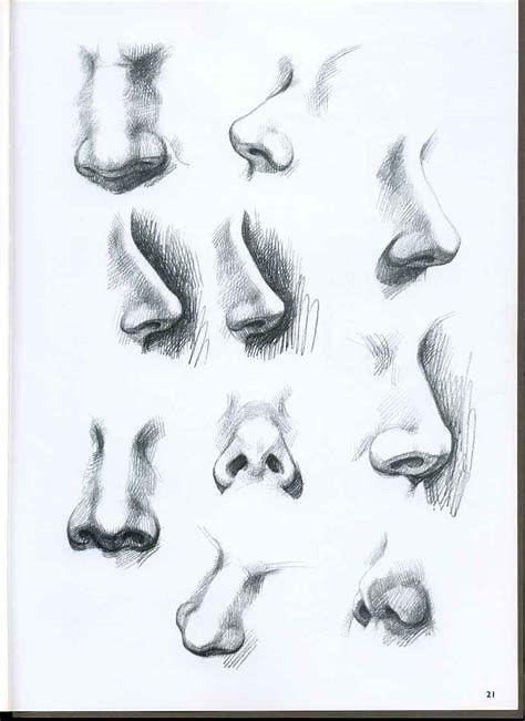 Afbeeldingsresultaten Voor Female Nose Drawing Nose Drawing