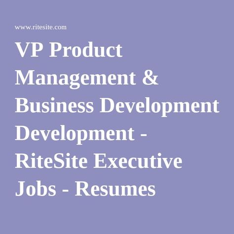 VP Product Management \ Business Development - RiteSite Executive - vp resume